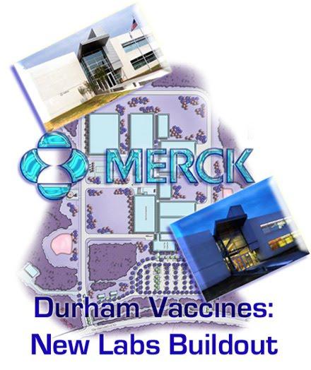 hepatitis b vaccine production process pdf
